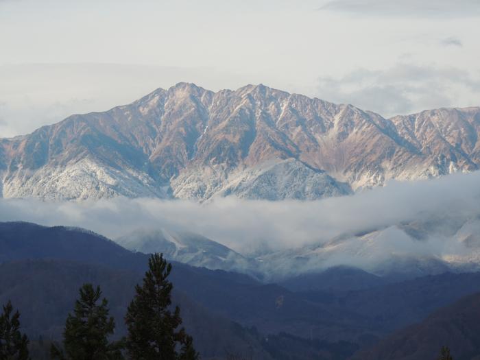 爺ヶ岳。前山が白くなりました。