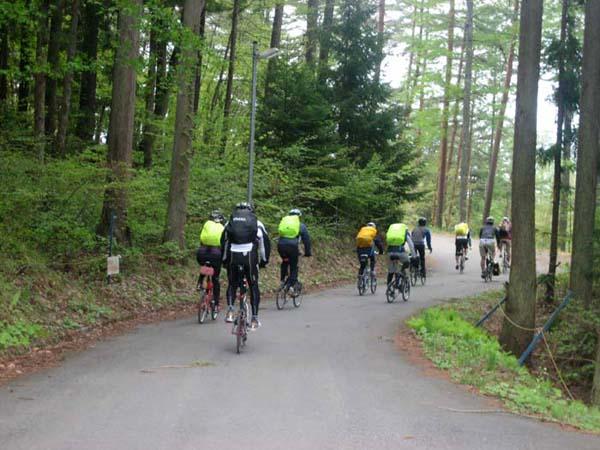 林りん館への道は林の中。