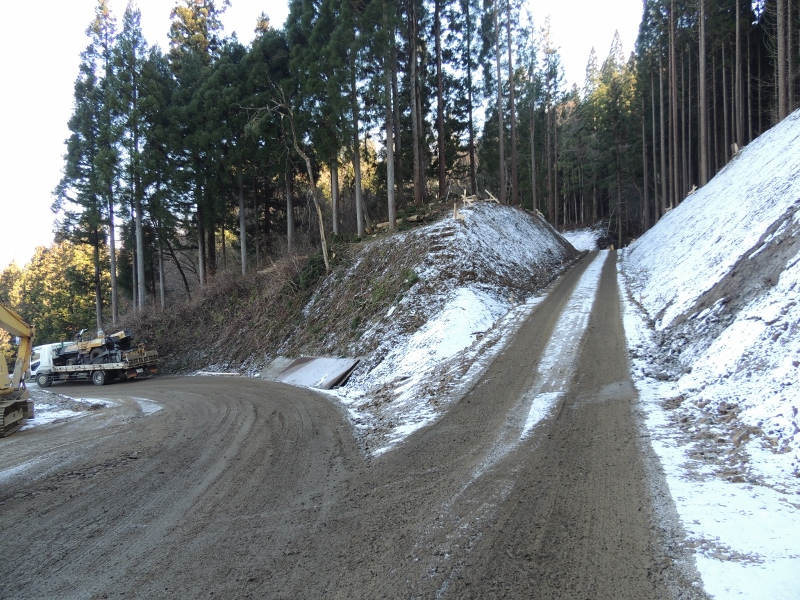 林りん館側からの写真。右が新道。