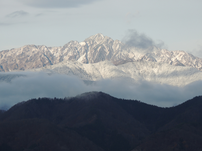 五竜岳も前山の方が白くなりました。