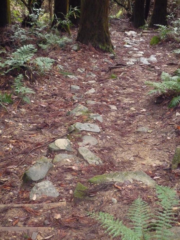 歩きやすいように石も埋めてある。