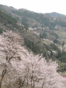 二反田周辺の山