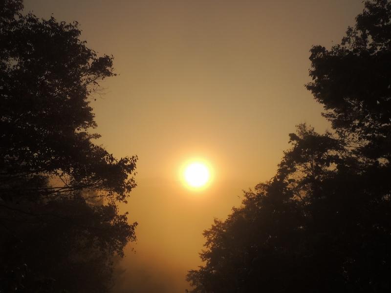 霧の中の太陽